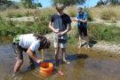 Estimating Sediment